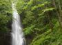 川苔山 ~奥多摩一の美滝!百尋の滝と渓谷滝巡り~
