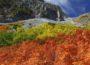 shibawannkoの100名山~300名山 撮影山行 ~ギャラリー一覧~